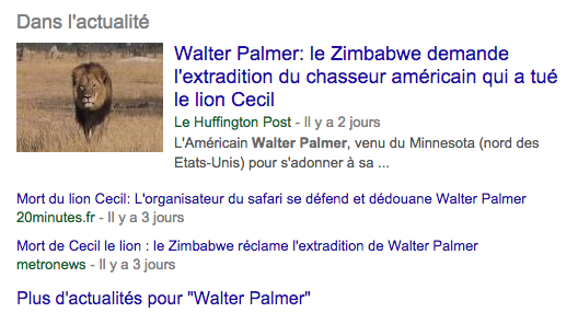 top-trends-walter-palmer