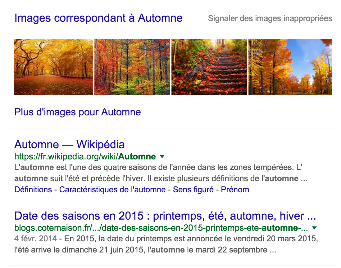 top-trends-automne