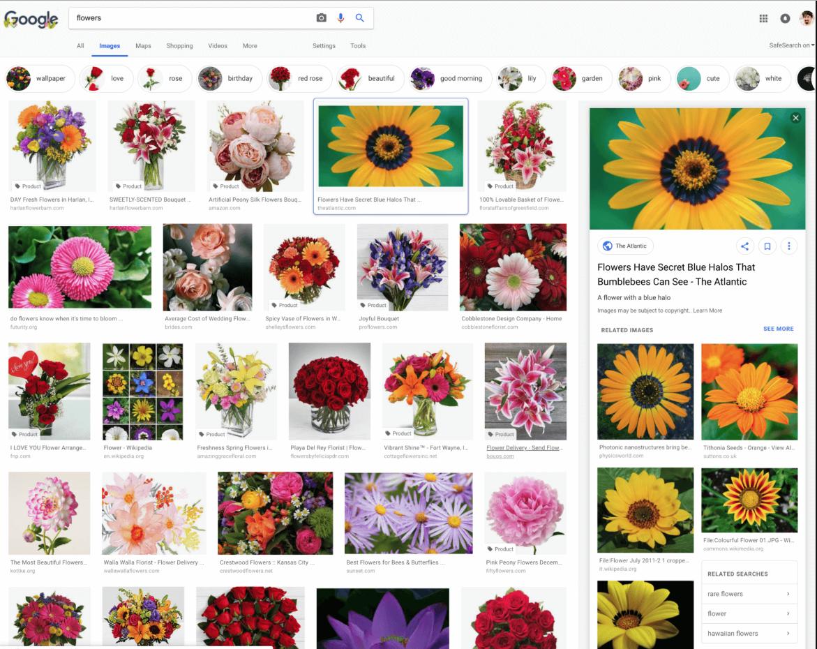 google-images-refonte