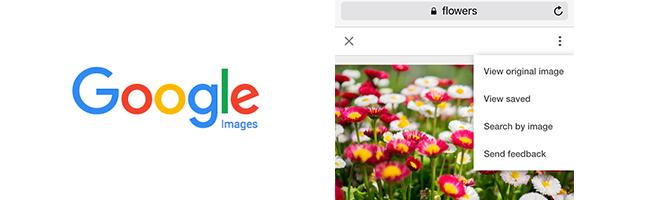 google-images-resultats-mobile