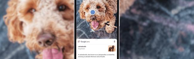 google-lens-ios
