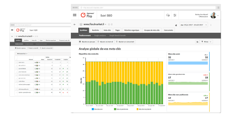 rank tracking interface