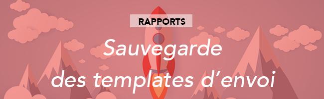 rapport-sauvegarde-template